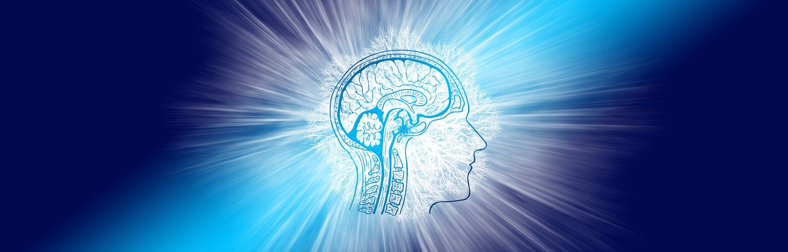 neuroATLANTIC - An Atlantic innovation platform on diagnosis and treatment of neurological diseases and aging - 2